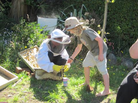 Two volunteers share their experience with beekeeping during a tour