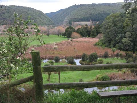Manawatu Gorge and Ashhurst Domain Wetland